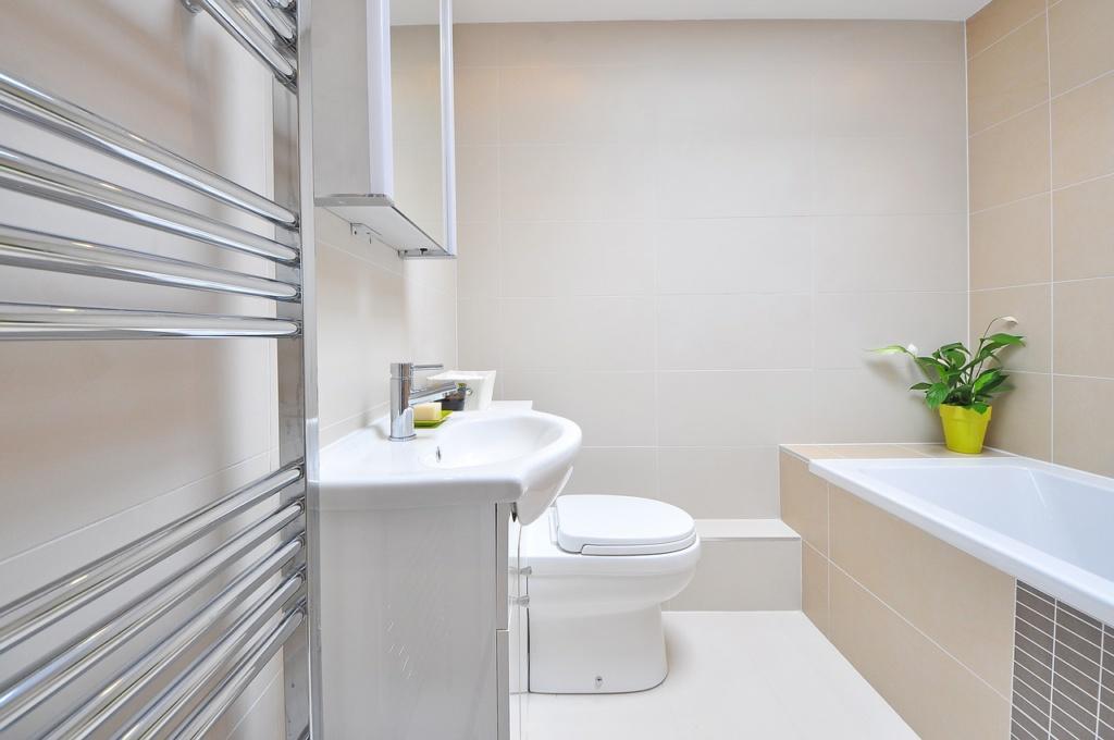 צביעת חדר אמבטיה עם עובש - מיכאל מרקו צבעי