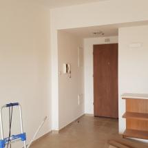 צביעת דירה - אומנות הצבע והגבס